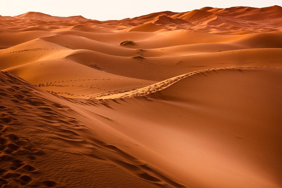 Не забудьте: станция Аравия Счастливая