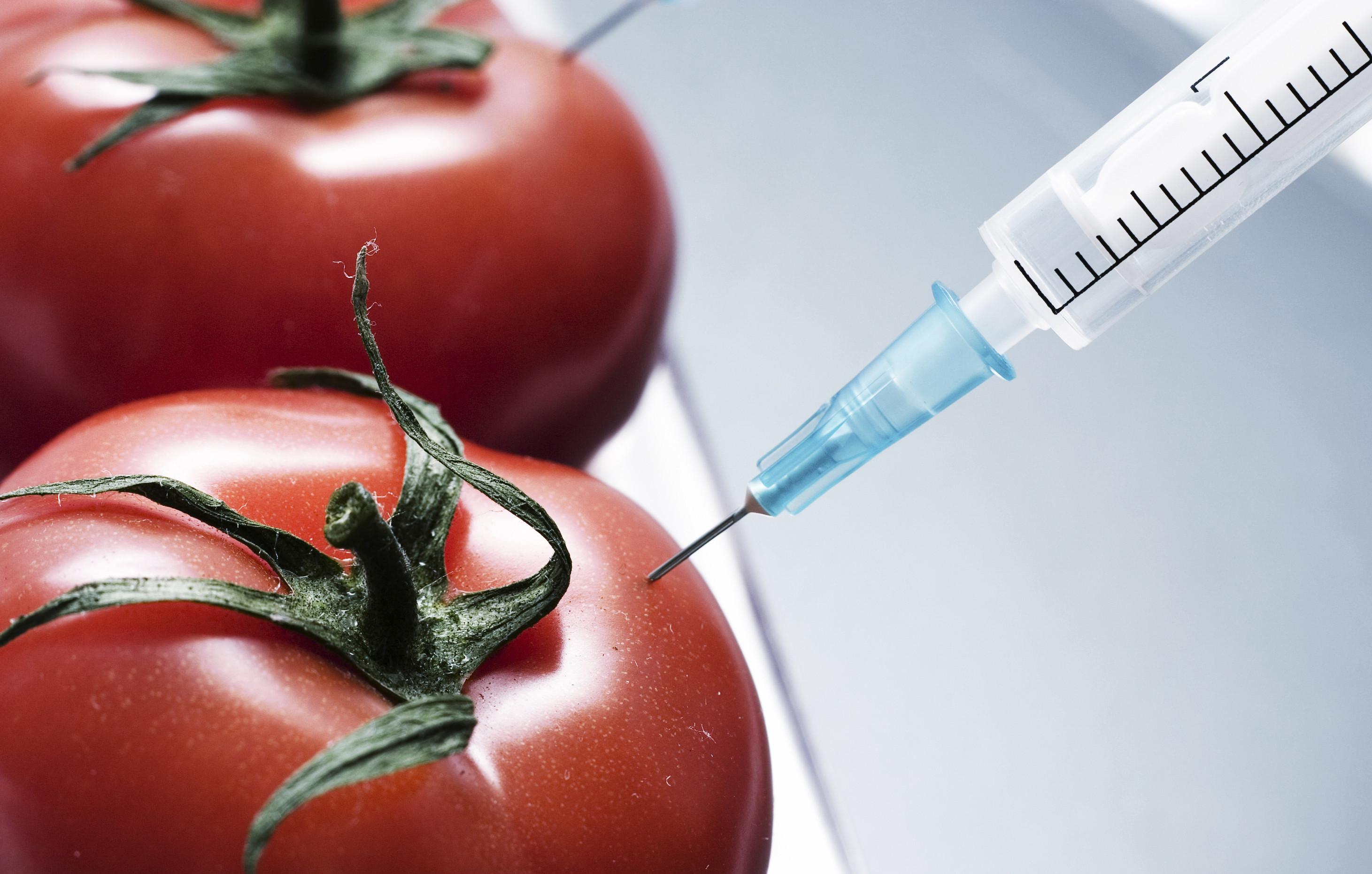 ГМО: запретить нельзя поддерживать
