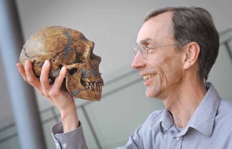 Неолитическая революция и строение черепа