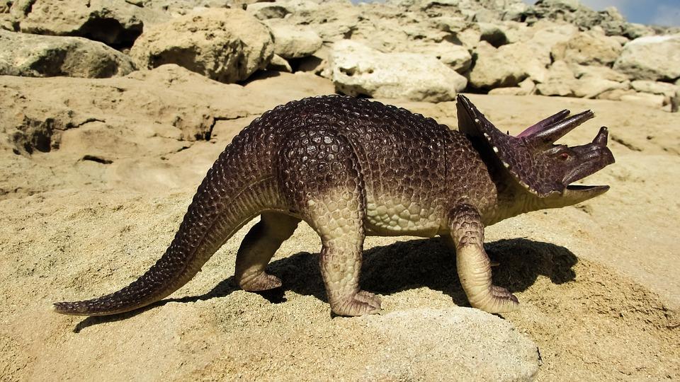 Эволюция трицератопса