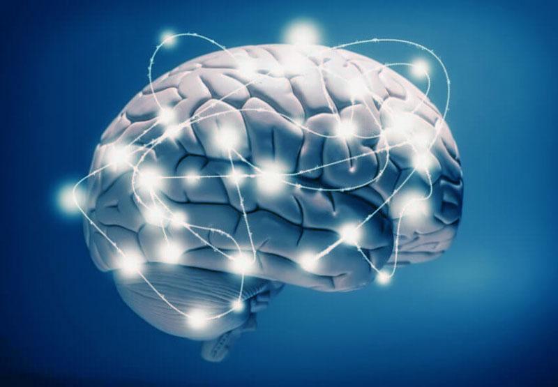 Что мы (не)знаем о мозге?