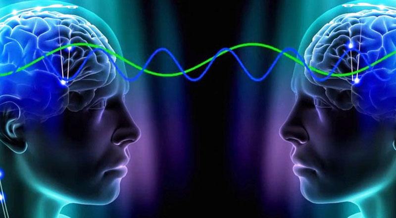 Объединяющей теории мозга нет!