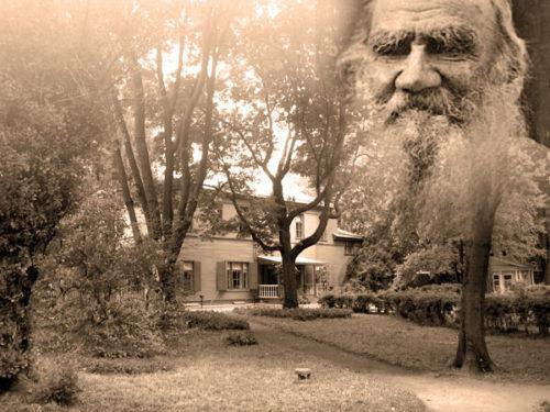 «Я вижу сад…»